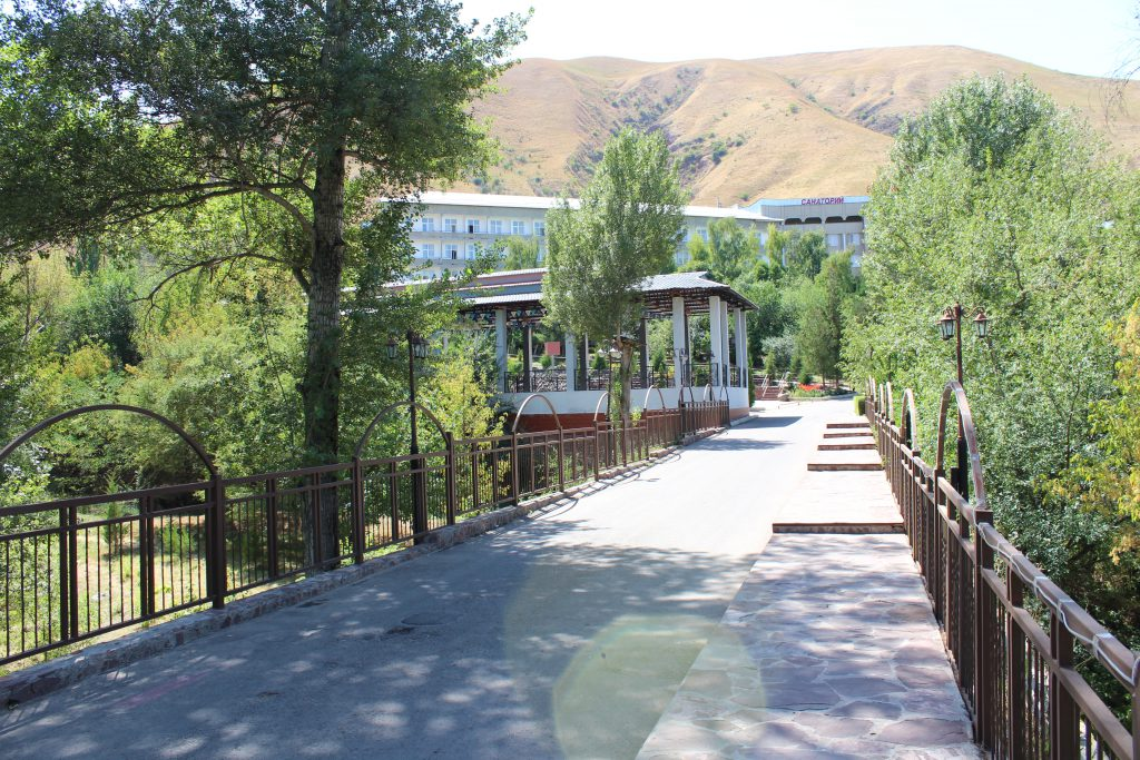 Казахстан село мерке фото