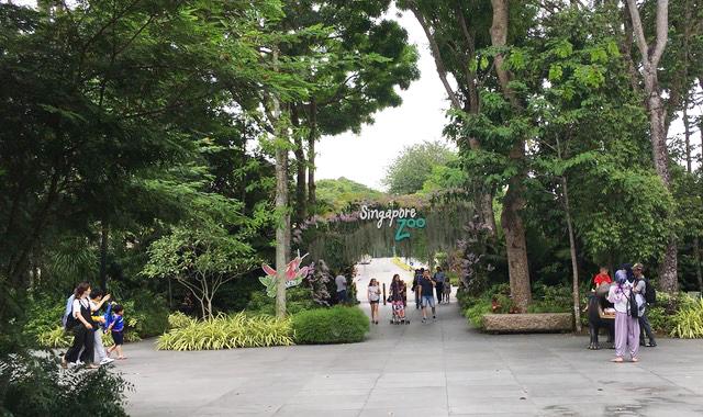 Singapore Zoo.jpg